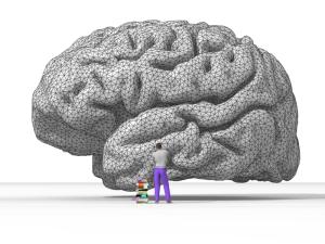 Nicolas_P._Rougier's_rendering_of_the_human_brain